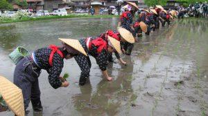 Rice-planting festival, Shirakawa-go